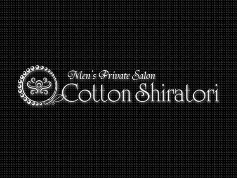 Cotton Shiratori(コットン白鳥)