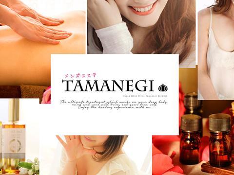 TAMANEGI(タマネギ) 画像1