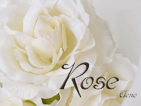 上野のメンズエステなら【Rose ロゼ】