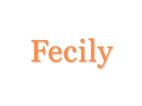 Fecily〜フェシリー 東京店