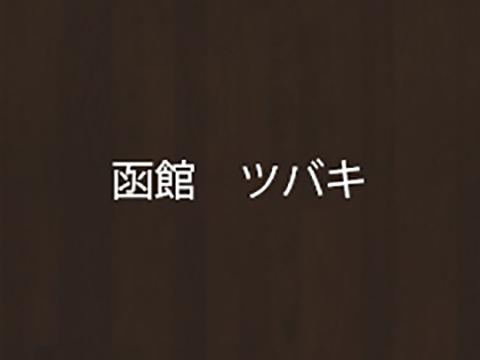 TSU-BA-KI(ツバキ)