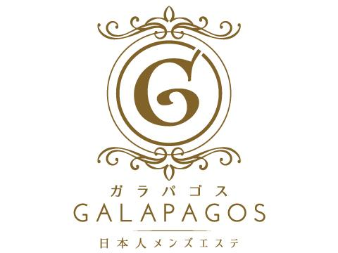 メンズエステガラパゴスのバナー画像