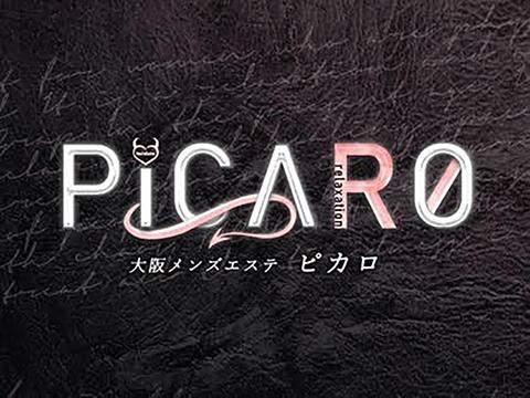 PICARO メイン画像