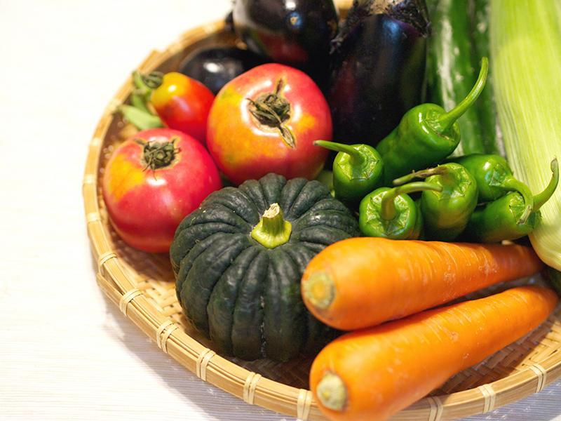 野菜を食べることの大切さ
